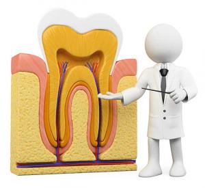 FireShot Screen Capture #019 – 'odontoiatria33 – L'endodonzia può migliorare la prognosi della malattia